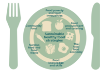 Sustainable food strategy plate graphic - if you require an accessible version or a transcript please email info@gcph.co.uk